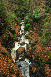 The sound of a flowing stream