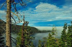 Floating fog