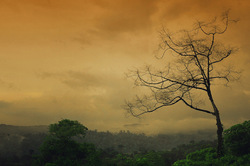 Minimalistic monsoon play