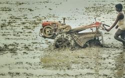 Setting up the soil