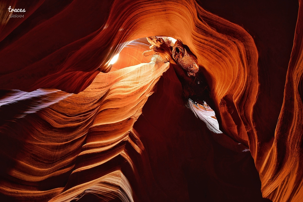Glowing curls of the Antelope Canyons