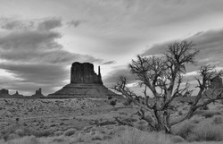 Timelessness of the Navajo land