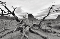 Echoes of the Navajo chants