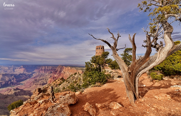 At the edge of South Rim