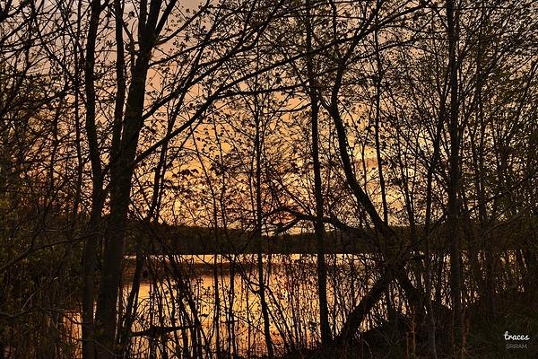 Sneak peek at the setting sun