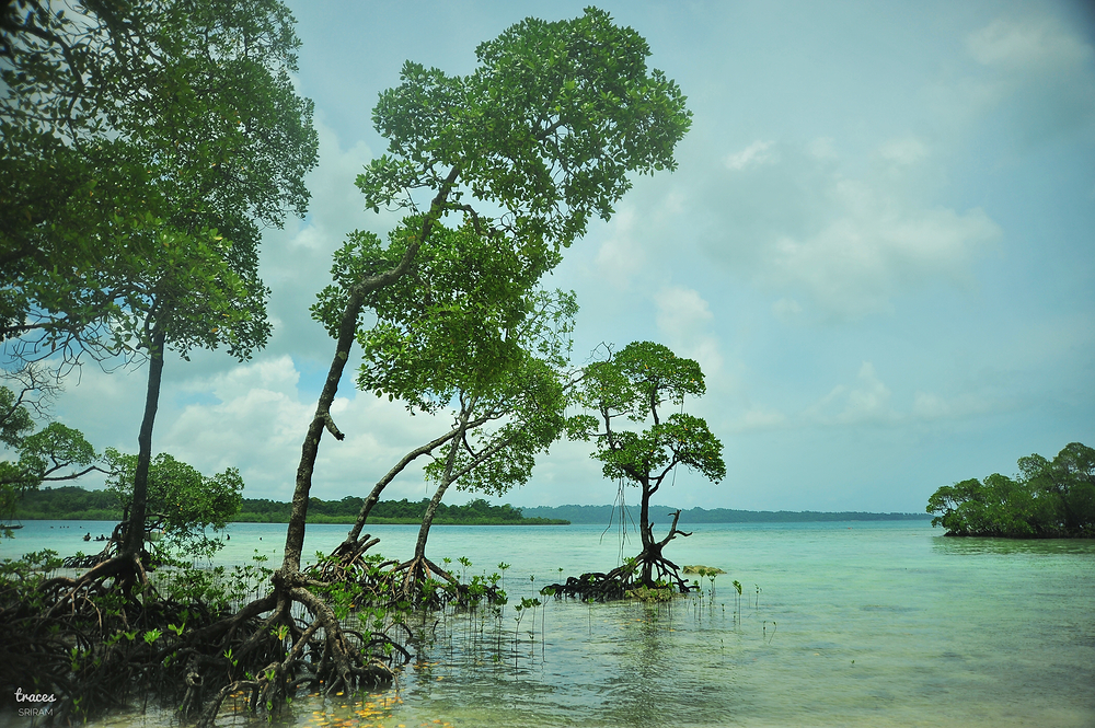 Havelock Andamans