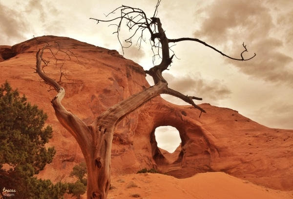 Arches & the wind
