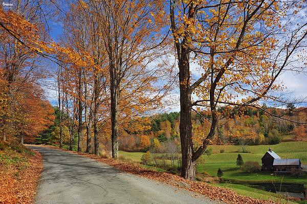 Vermont tales