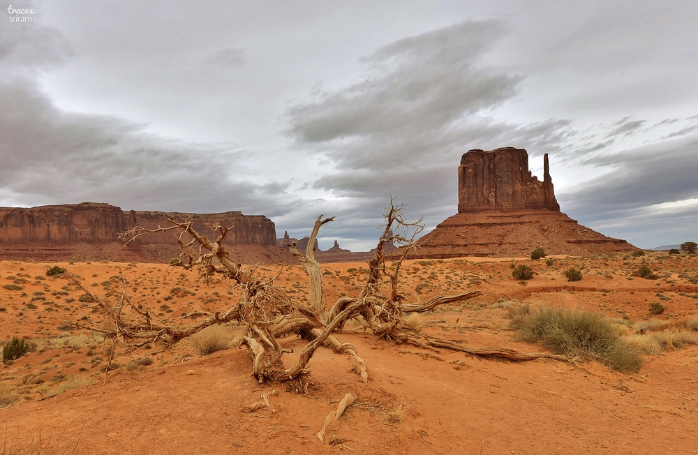 Remains of the Monument Valley