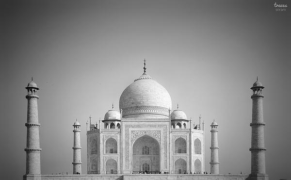 Dreaming Taj