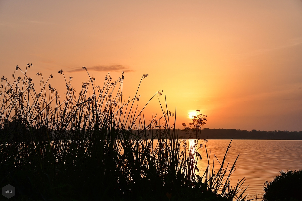 Sunrise at whiterock