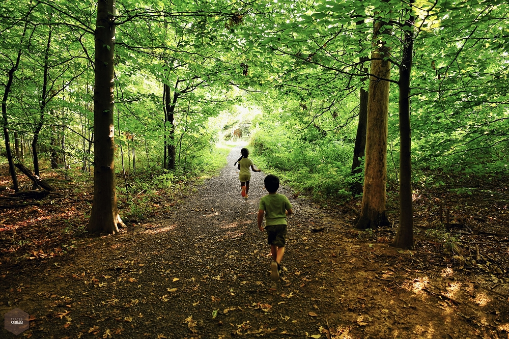 A run in the woods