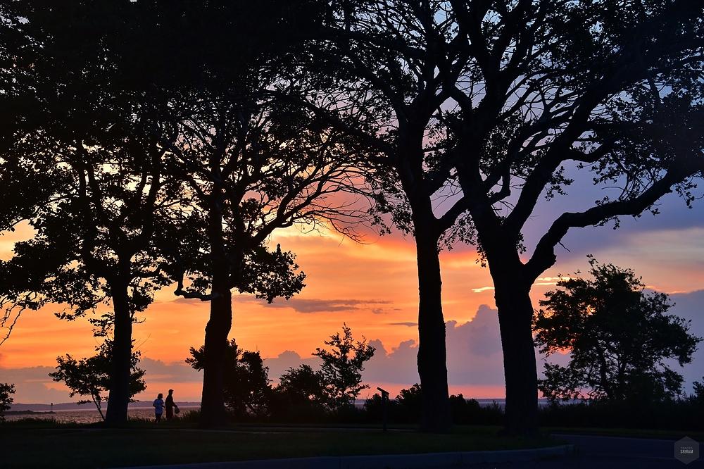 Evening breeze