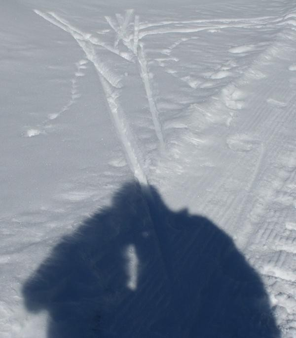 Shadow of two people