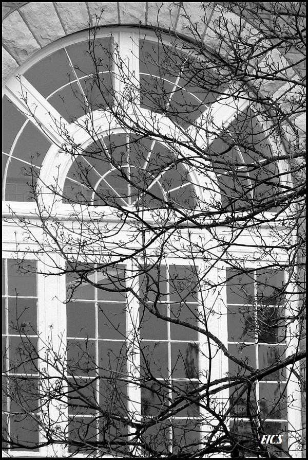 window, james madison university