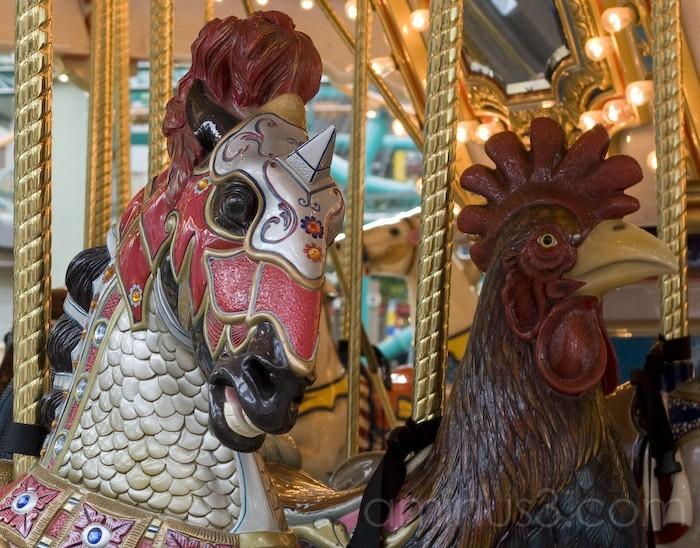 Carosel Rides