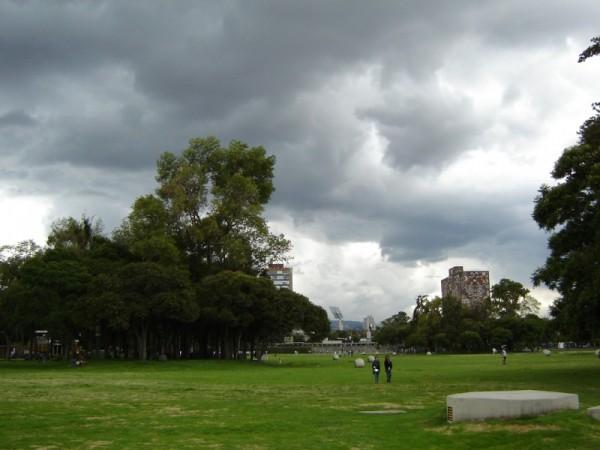 Tarde Nublada
