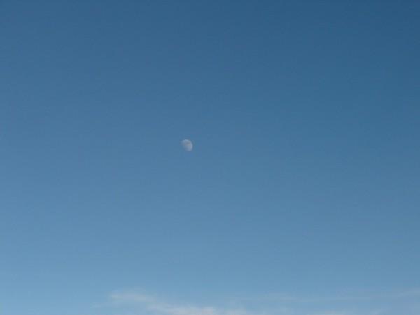 luna a 40 mil pies