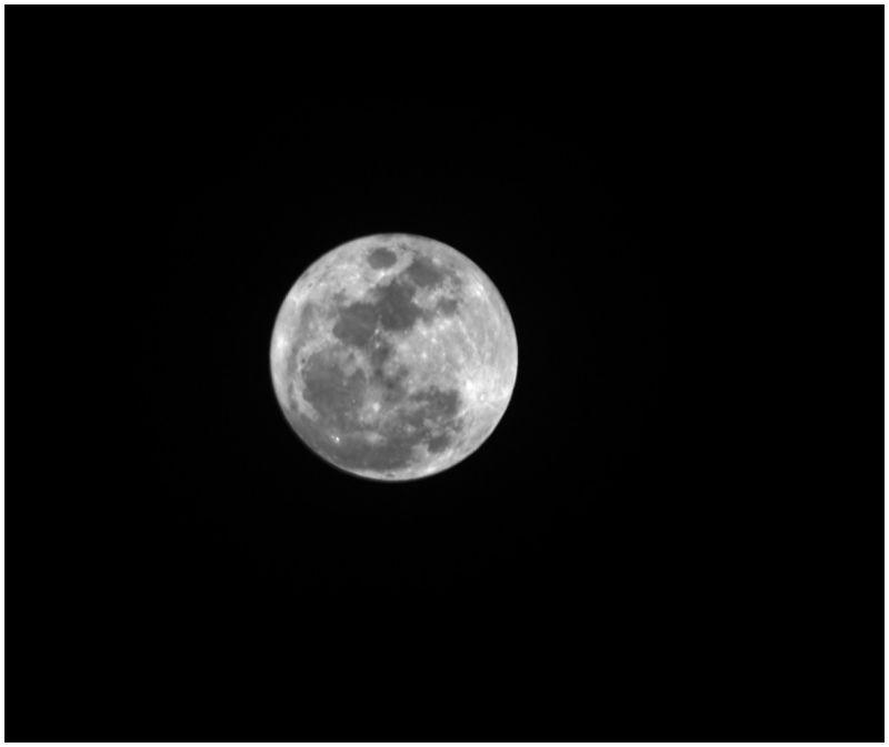 mayo y luna