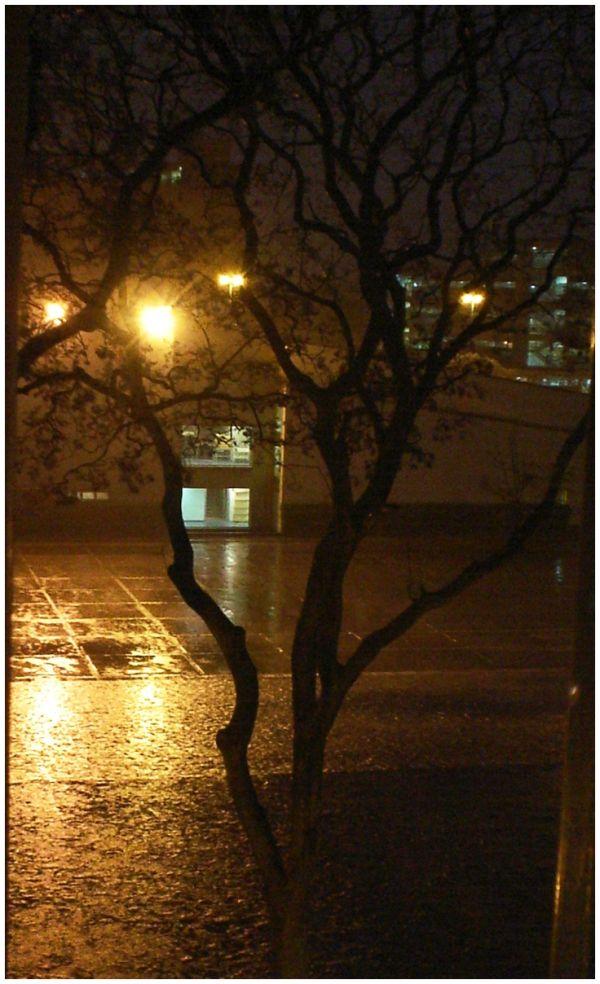 la lluvia cae en cu
