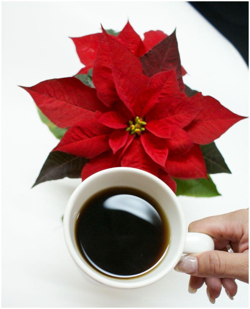 café y nochebuena