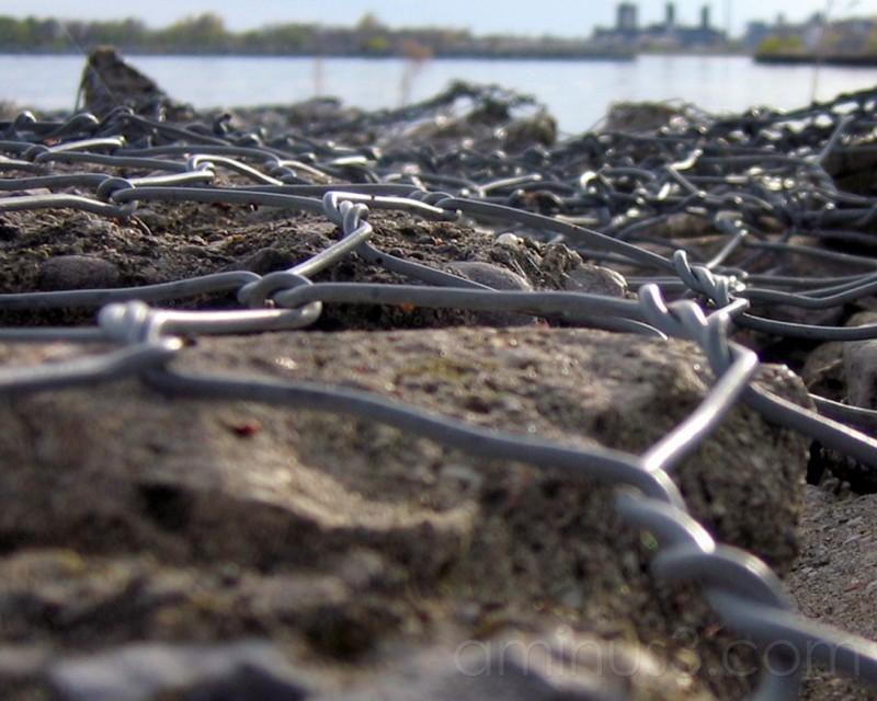 wire & rock