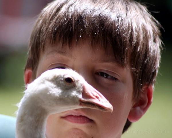 Jordan and the goose 2