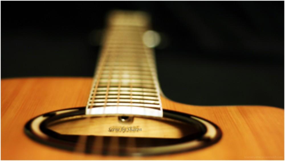 365, guitar