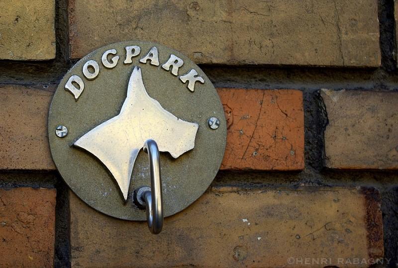 Crochet parking pour chien
