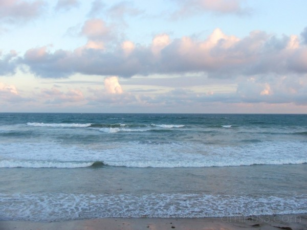 Ocean Grove #3
