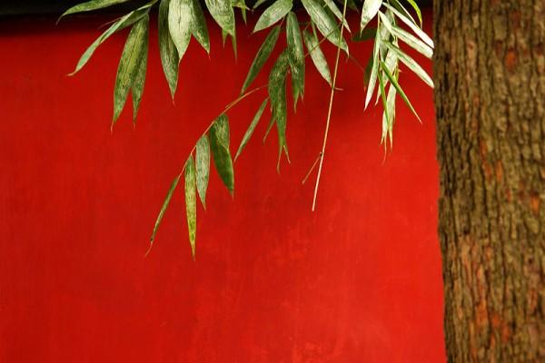 The red in  Wu Hou Shrine,Chengdu