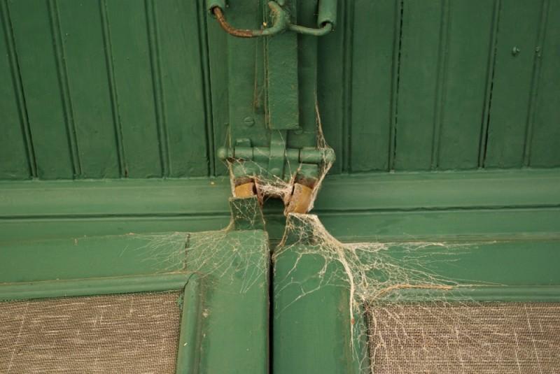 webbed door