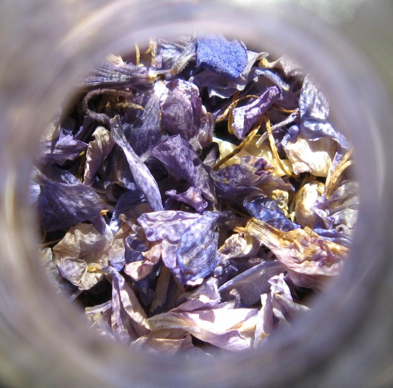 lavender in a bottle I