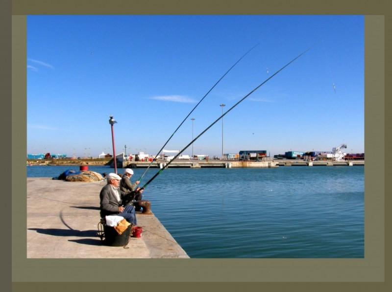 Fishing at The Harbor Ⅱ