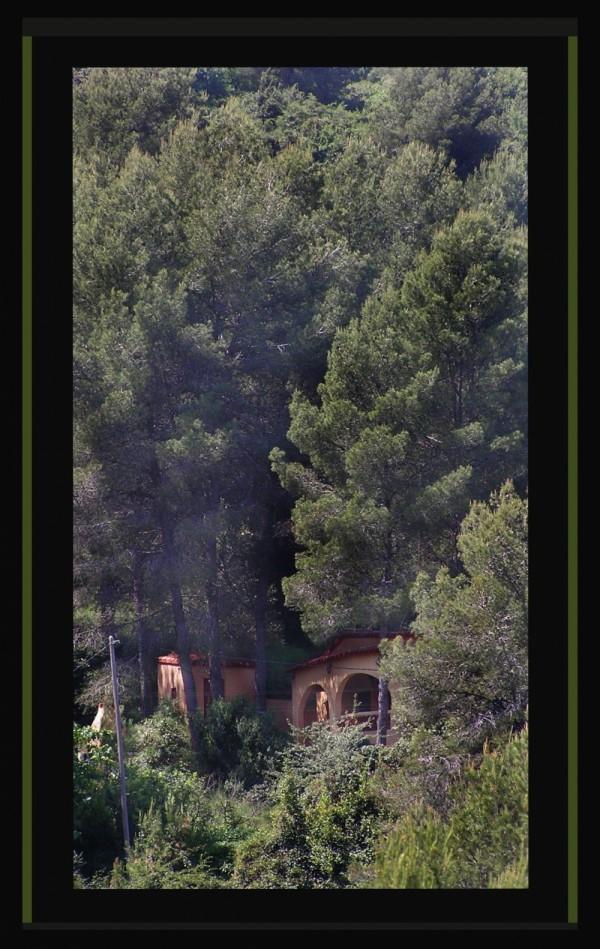House inThe Wood