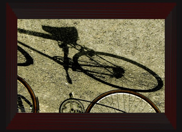Bicycle -  Shadow