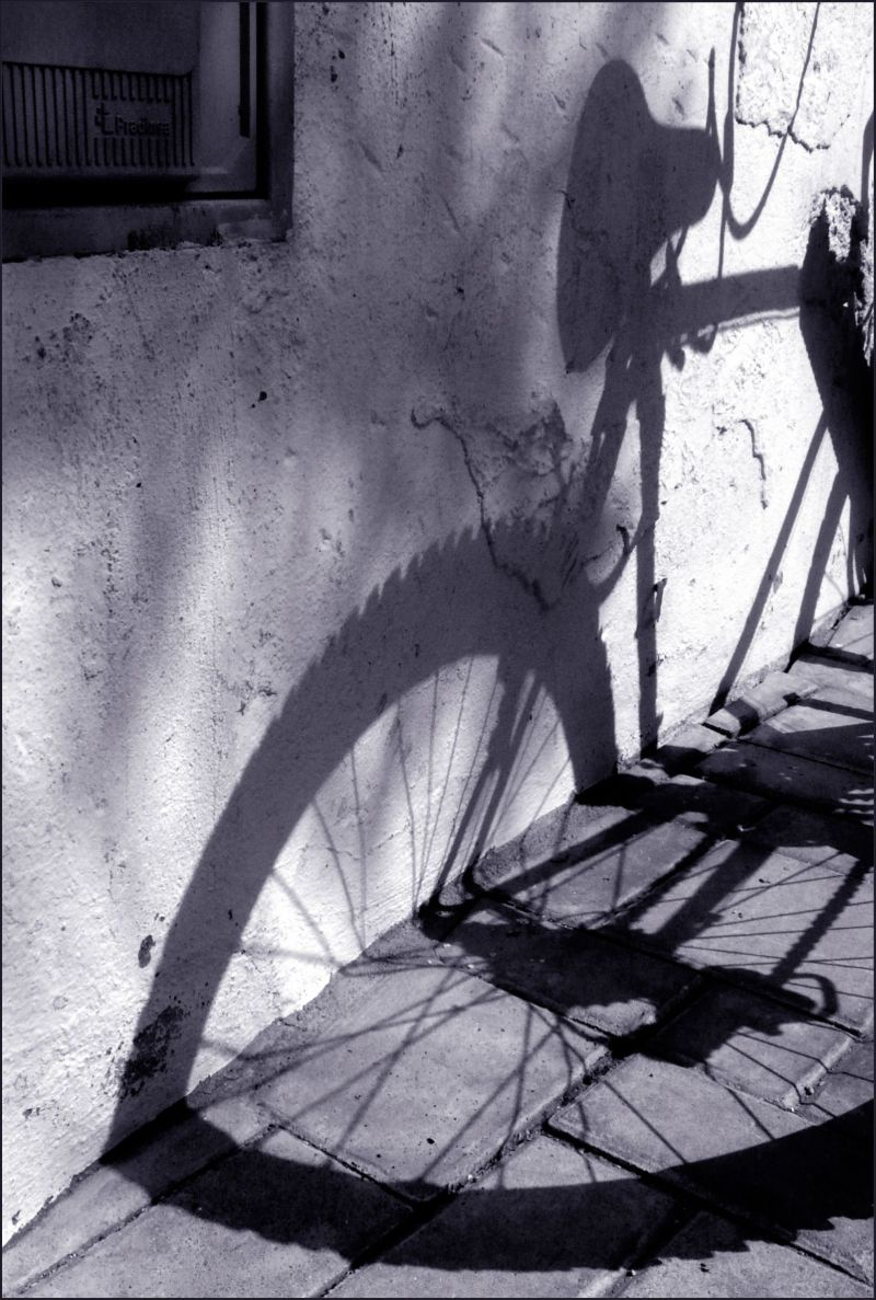 Shadow of  The Bicycle
