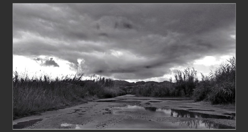 Rain Clouds at Pego Marsh