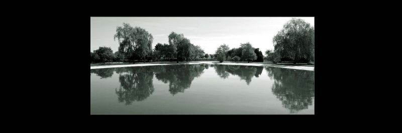 Pond at The Gandia Park in B&W