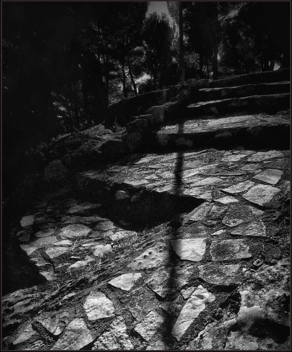 Moonlight Stone Steps