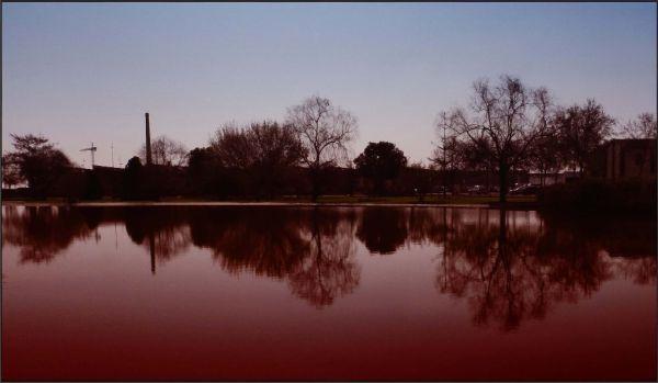 Pond in Dusk