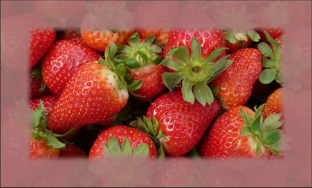 Seasonal Fruit Spanish Strawberries