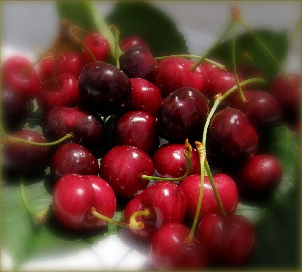 Seasonal Fruit  - Spanish Cherries