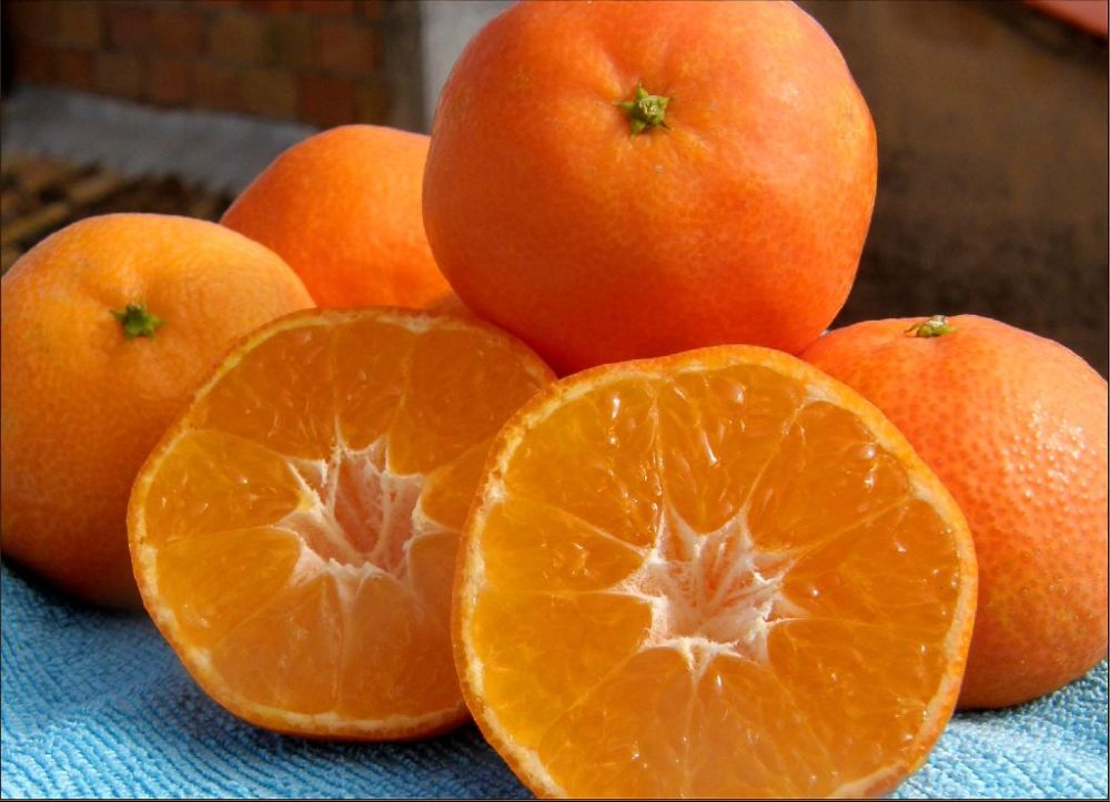 Seasonal Fruit - Spanish Marisol