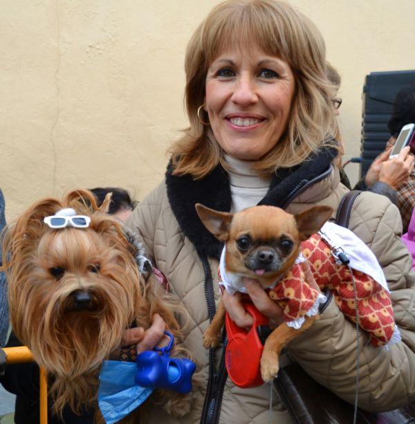 Fiesta de Sant Antoni {Animal Blessing Day} Ⅱ
