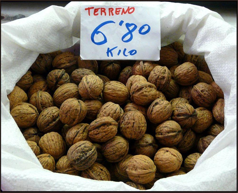 Nueces Terreno -Spanish Walnuts
