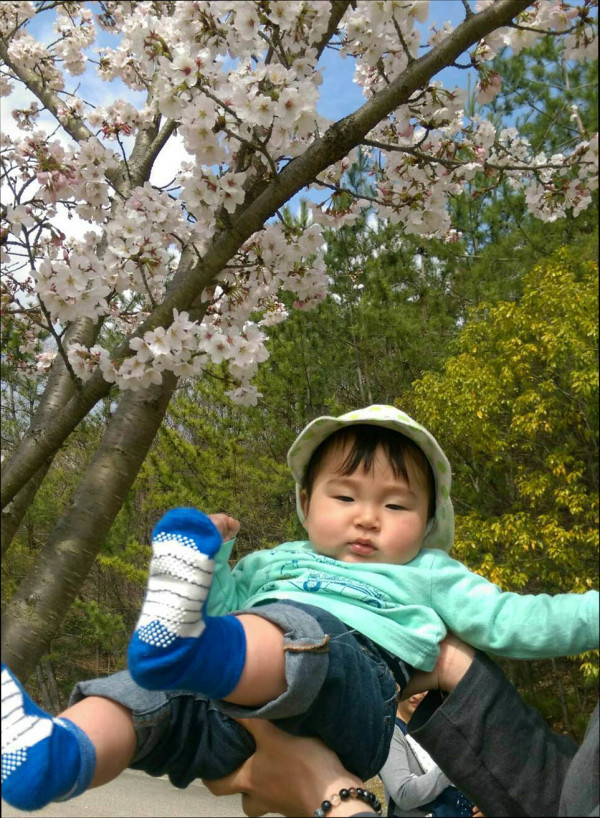 Rei Under the Cherry Blossom Tree
