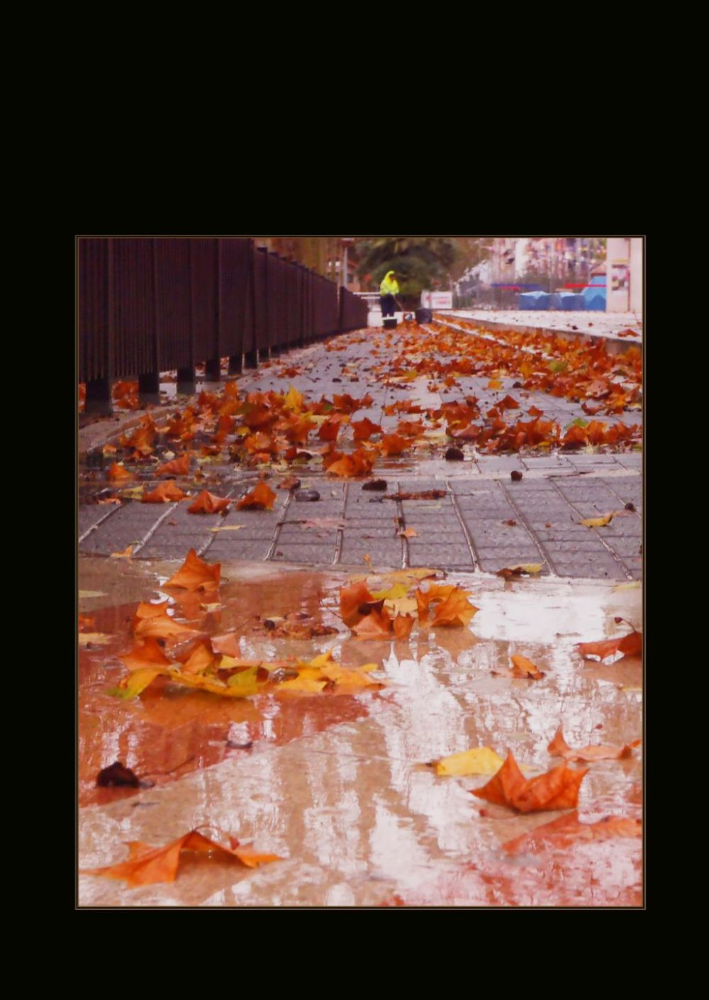 Wet Square Covered In Fallen Leaves