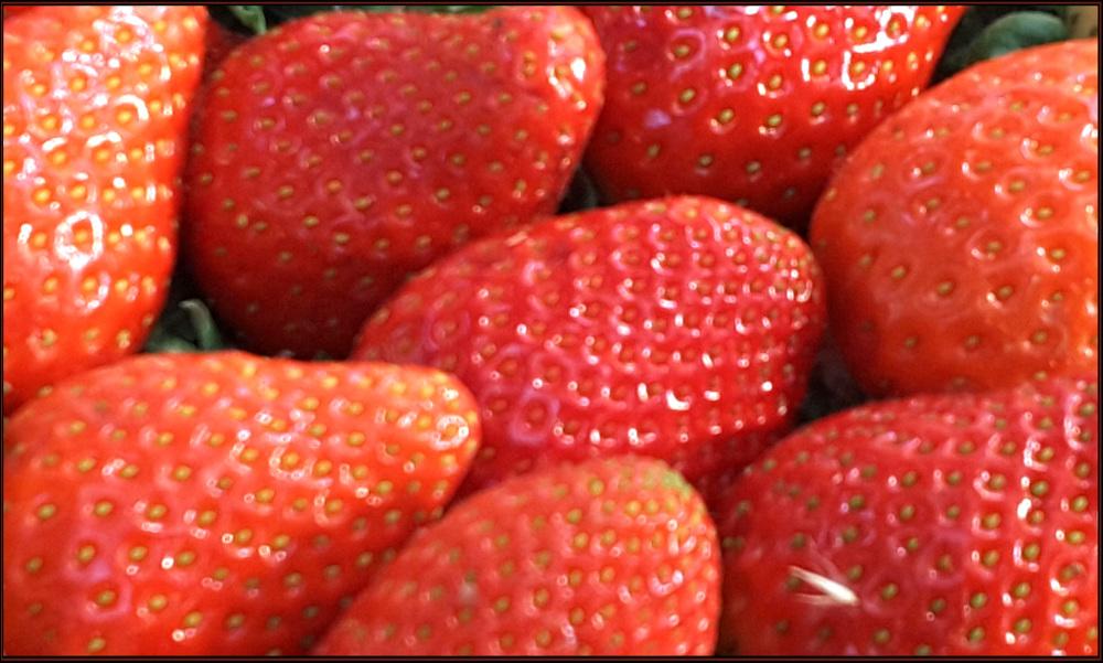 Seasonal Fruit Strawberries