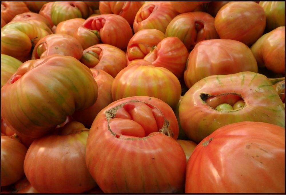 Los Tomates de España